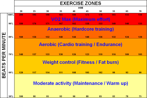 fat burning exercises heart rate zones